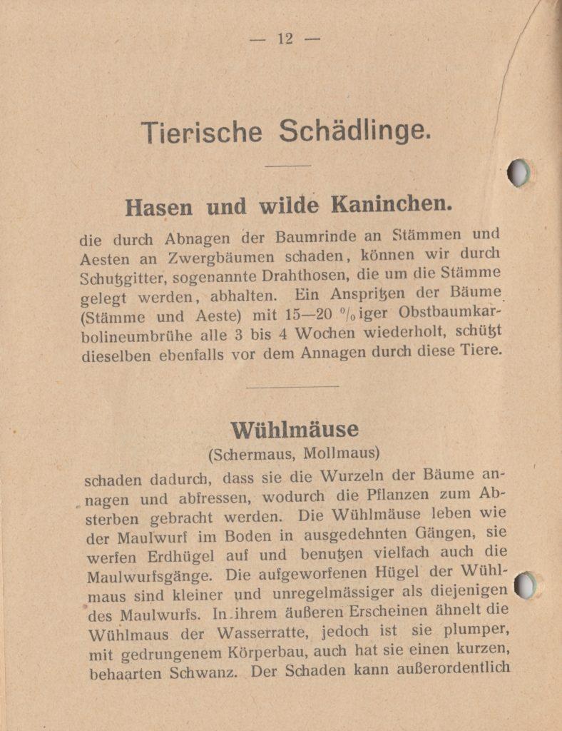 http://holderspritze.de/wp-content/uploads/2018/05/Die-Bekämpfung-der-hauptsächlichen-Schädlinge-und-Krnakheiten_1919-13_1024-788x1024.jpeg