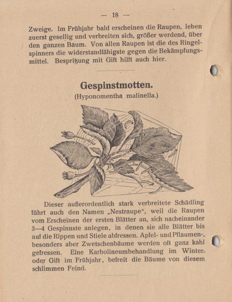 http://holderspritze.de/wp-content/uploads/2018/05/Die-Bekämpfung-der-hauptsächlichen-Schädlinge-und-Krnakheiten_1919-19_1024-788x1024.jpeg