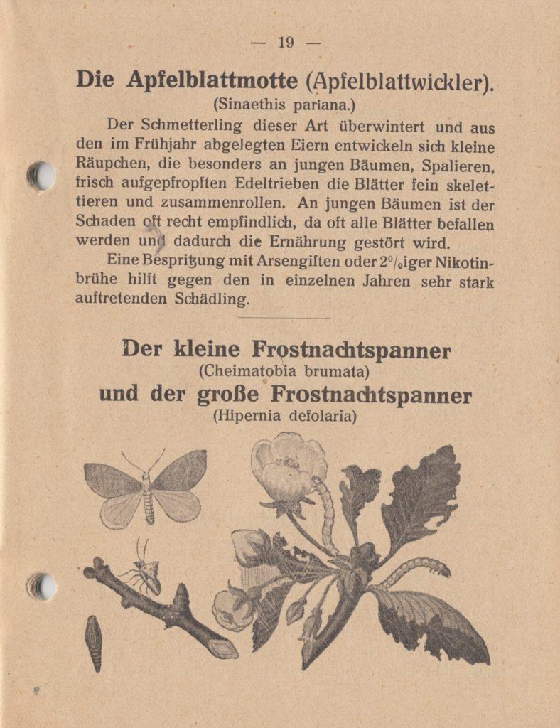 http://holderspritze.de/wp-content/uploads/2018/05/Die-Bekämpfung-der-hauptsächlichen-Schädlinge-und-Krnakheiten_1919-20_1024-788x1024.jpeg