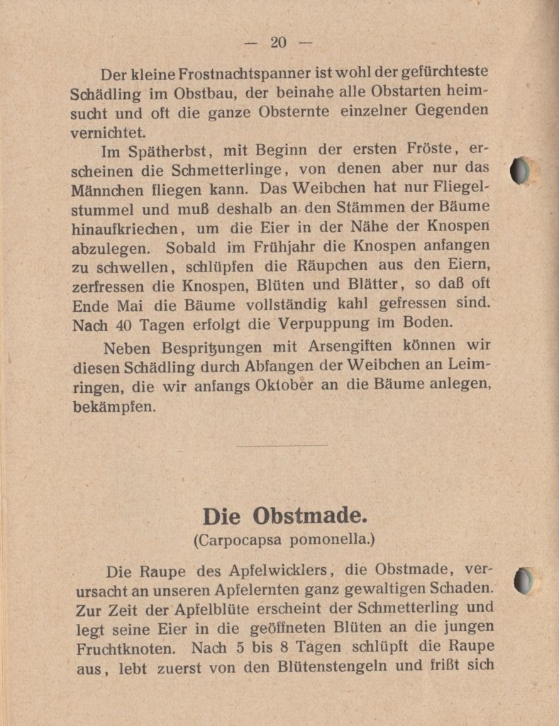 http://holderspritze.de/wp-content/uploads/2018/05/Die-Bekämpfung-der-hauptsächlichen-Schädlinge-und-Krnakheiten_1919-21_1024-788x1024.jpeg