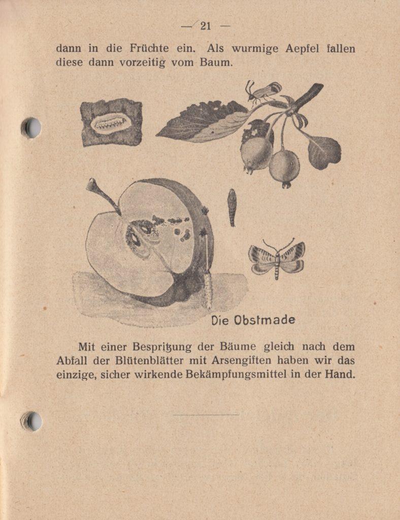 http://holderspritze.de/wp-content/uploads/2018/05/Die-Bekämpfung-der-hauptsächlichen-Schädlinge-und-Krnakheiten_1919-22_1024-788x1024.jpeg
