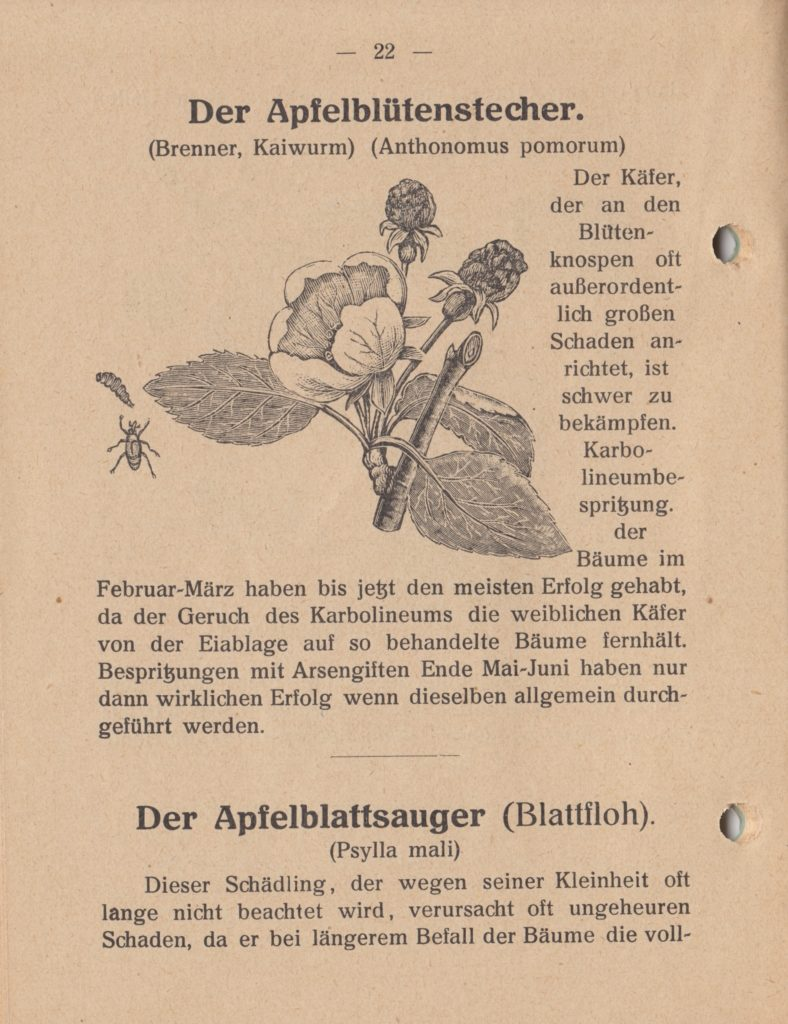 http://holderspritze.de/wp-content/uploads/2018/05/Die-Bekämpfung-der-hauptsächlichen-Schädlinge-und-Krnakheiten_1919-23_1024-788x1024.jpeg