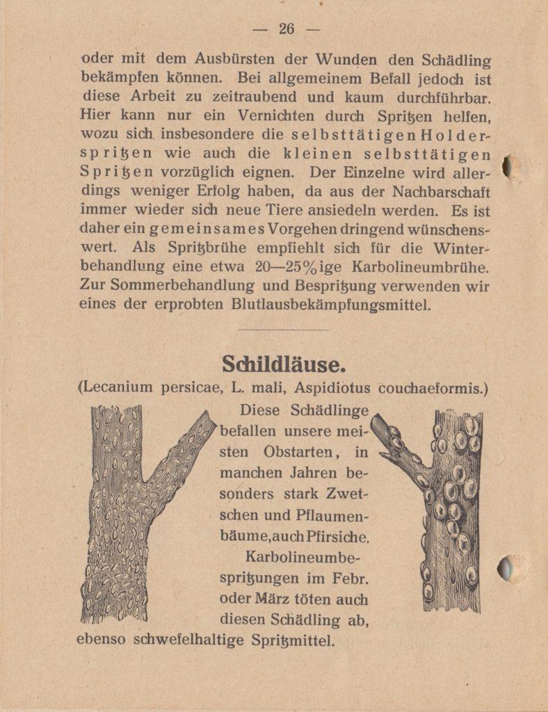 http://holderspritze.de/wp-content/uploads/2018/05/Die-Bekämpfung-der-hauptsächlichen-Schädlinge-und-Krnakheiten_1919-27_1024-788x1024.jpeg