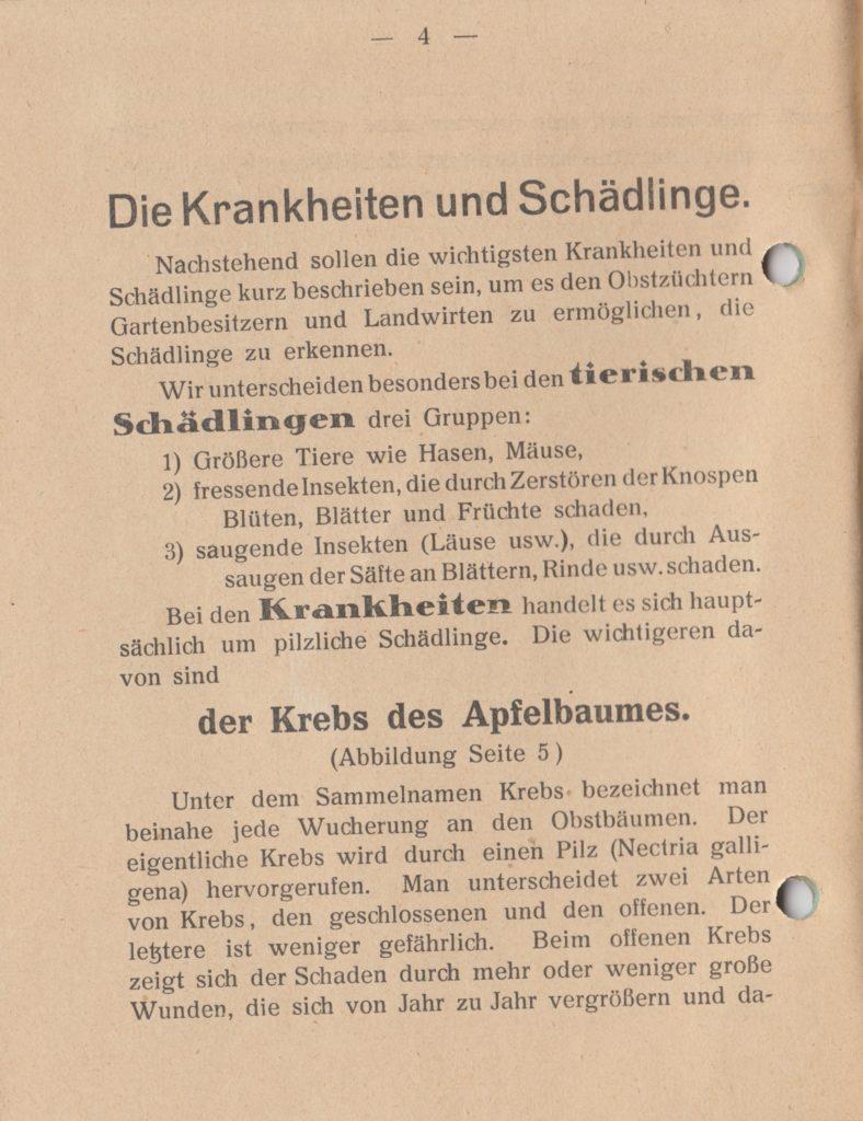 http://holderspritze.de/wp-content/uploads/2018/05/Die-Bekämpfung-der-hauptsächlichen-Schädlinge-und-Krnakheiten_1919-5_1024-788x1024.jpeg