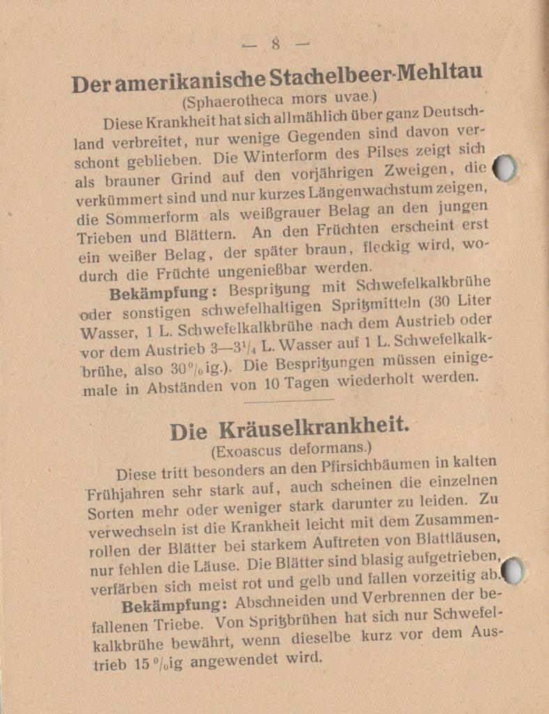 http://holderspritze.de/wp-content/uploads/2018/05/Die-Bekämpfung-der-hauptsächlichen-Schädlinge-und-Krnakheiten_1919-9_1024-788x1024.jpeg